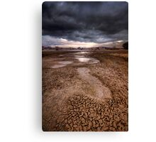 Following Storm Canvas Print