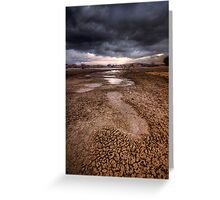 Following Storm Greeting Card