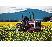 Skagit Valley Farming Photographic Print