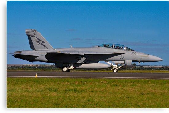 F/A-18F Super Hornet, A44-203, 1 Squadron, RAAF Amberley by Tim Pruyn
