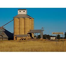 Brushwood Grain Silos Photographic Print