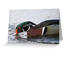 Reason # 834 against water pollution Greeting Card