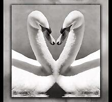 Mirror, Mirror by KBritt