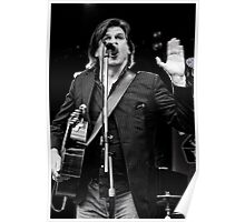 Tex Perkins at Rock In The Vines Poster