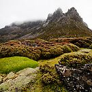 A mist shrouded Mt. Ossa by Michael Gay