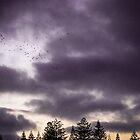 Aura sky by Louise Delahunty