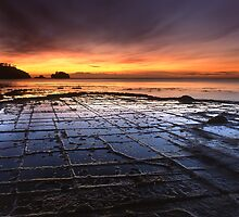 """Tessellated Pavement"" ∞ Eaglehawk Neck, Tasmania - Australia by Jason Asher"