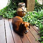 Tired sausage dog by GCBela