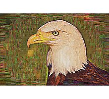 Bald Eagle Embroidered Photographic Print