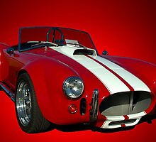 The Ford Shelby Cobra and GT-40 Collection by TeeMack