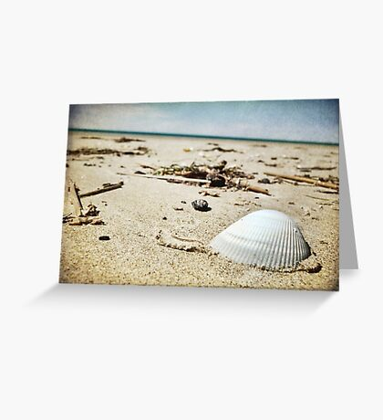 The Shell ~ Greeting Card