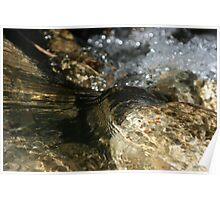 water flowing over rocks Poster