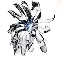 Magnolia Bloom by Mark McReynolds