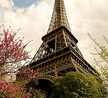 Eiffel Tower by Sanne Hoekstra