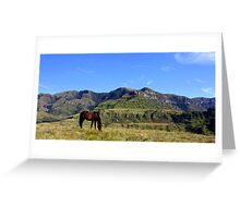 Monks Cowl Greeting Card