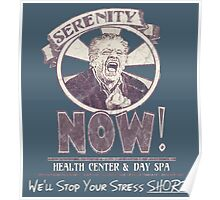 Serenity NOW Health Center & Day Spa (diSTRESSED) Poster