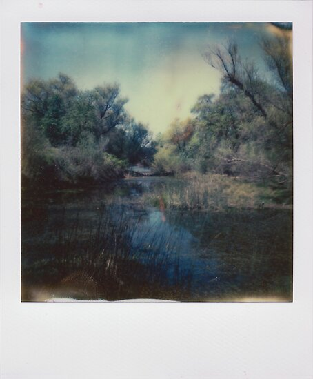 where i dream by Jill Auville