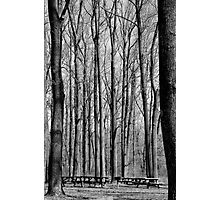 Parked Photographic Print