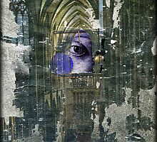 The Omniscient  by Susan  Kimball