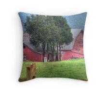 Barn On Belle Grove Plantation Throw Pillow