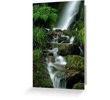 Waterfall at Loweswater Greeting Card