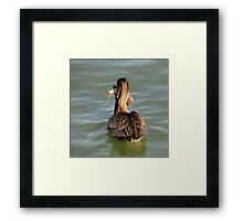 The Fish (What Fish ???) Framed Print