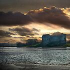 Carew Castle by Brian Beckett