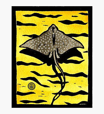 White Spotted Eagle Ray Photographic Print