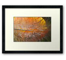 Tulip Sunrise Framed Print