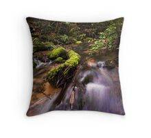 Mclarens Moss Throw Pillow