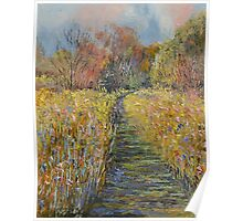 Path in the Meadow Poster