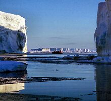 Tabular Icebergs, Cape Roget, Antarctica by Carole-Anne