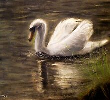 Swan in Water by Masaad Amoodi