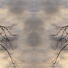 In The Mirrored by ArtOfE