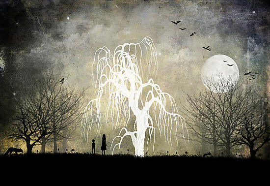 One Moonlit Night by Rookwood Studio ©