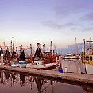 Dawn at Scarborough Boat Harbour. Queensland, Australia by Ralph de Zilva