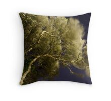 24th February 2012 Throw Pillow
