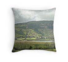 Views From Dodd Wood Throw Pillow