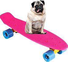 Skater Pug by ghettoblaster28