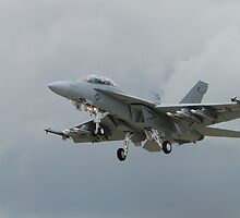 Super Hornet - Grey on Grey by Barrie Woodward