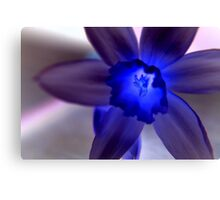 daff with a difference Canvas Print
