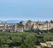 Cite de Carcassonne, France by DPalmer
