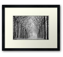 arranged in the fog Framed Print