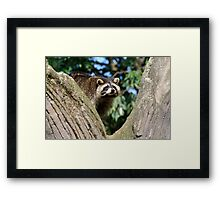 Who is there? Framed Print