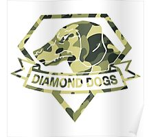 Diamond Camouflage Poster