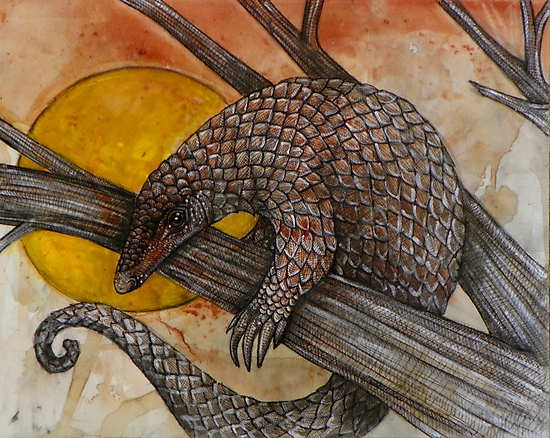 The Pangolin by Lynnette Shelley