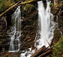 Ranger Falls in Spring - Mt. Rainier N. P. by Mark Heller