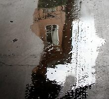 puddle face, can I look inside your window? by Marianna Tankelevich