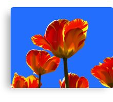 Electric Orange & Yellow Tulips Canvas Print