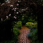 Garden Path by Lee LaFontaine